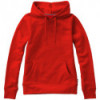 Alley hooded sweater