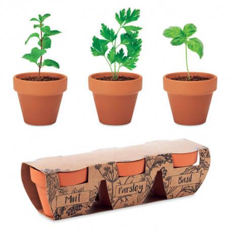 Zestaw 3 doniczek z nasionami - mięta, pietruszka, bazylia, FLOWERPOT